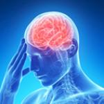 【認知症予防・仕事能率UP】頭を使うだけではダメ!これが本当の脳トレ