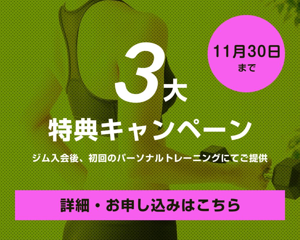 campaign11-01