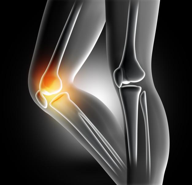 鍵は〇 〇?膝の痛みを良くする筋膜リリース&ストレッチ