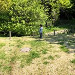今年のゴールデンウィークの過ごし方。樹木の恩恵を受けよう